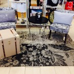 Chair-Upholstery-Cleaning-Federal_Way