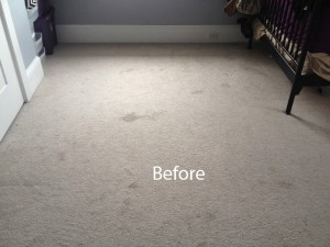 Cranberry Juice Stain Removal Federal_Way A