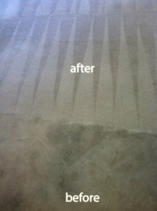 Federal_Way-Carpet-Cleaning-Carpet-Cleaning