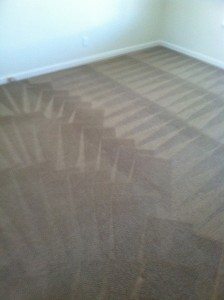 Federal_Way-Carpet-Cleaning-Wall-To-Wall
