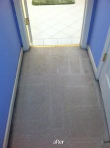Federal_Way-Vomit-2-after-carpet