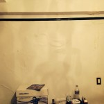 Federal_Way-mold-damage