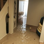 Federal_Wayhome-flood-damage-repair