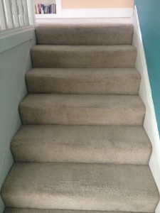 Stairs-Carpet-Cleaners-Federal_Way