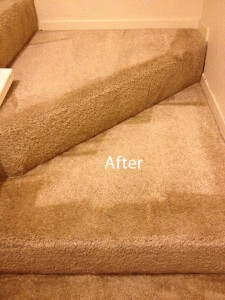 Stairs-Carpet-Cleaning-Federal_Way-B