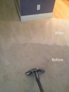 Steam-Carpet-Cleaning-Federal_Way